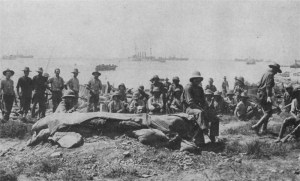 Troops in the open at Suvla Bay
