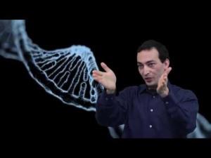 Eran Elhaik, geneticist